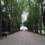 一昨年前のパリ旅行②