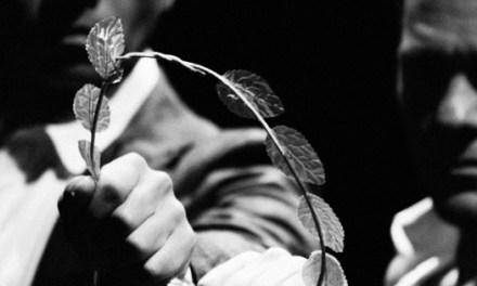"""Criadero de Morsas estrena """"Coriolano después de William Shakespeare"""" en el Teatro Principal de Alicante"""