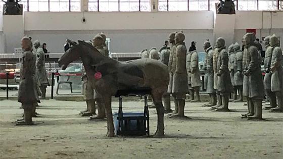 MARQ expondrá por primera vez en España diez figuras de Ejército de Terracota de Xi'an