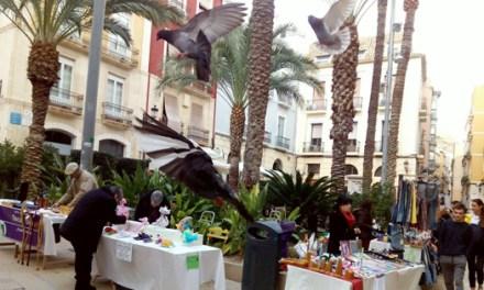 Único mercadillo 100% Artesanal de Alicante esta situado en la Plaza de la Santísima Faz del casco antiguo