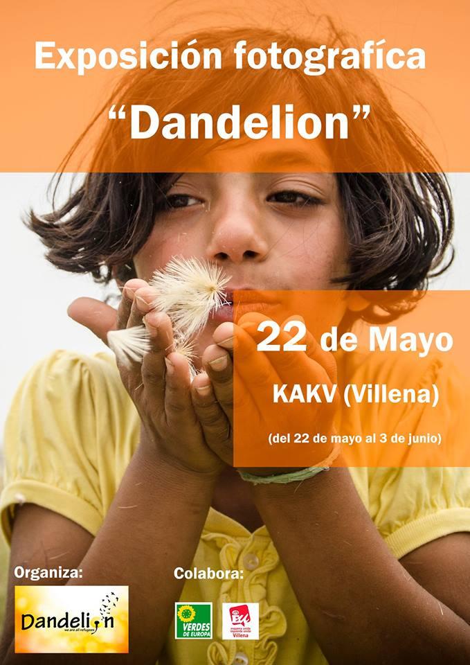 Exposición fotográfica Dandelion en Kakv Villena