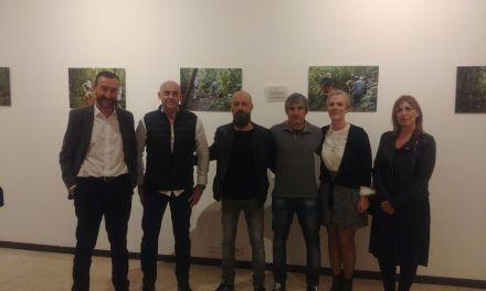 Inauguración de la exposición de Oxizonia en Elche