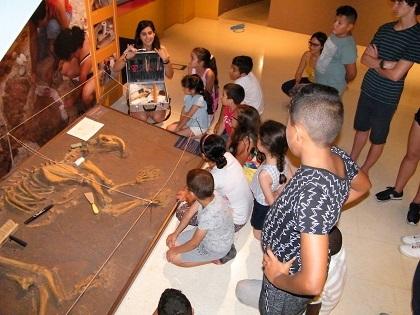 El MUPE celebra els seus 14 anys com l'únic museu exclusiu de paleontologia de tota la província d'Alacant