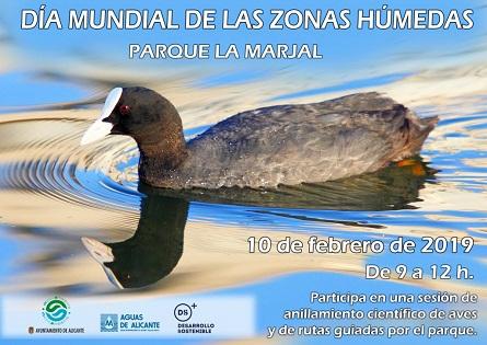 L'Ajuntament d'Alacant commemora el Dia Mundial dels Aiguamolls amb un programa d'activitats didàctiques al parc La Marjal