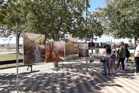 Éxito de participación en una nueva edición de Art al Carrer en Novelda