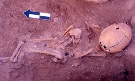 Excavaciones de la Universidad de Alicante pueden ser claves para escribir cuatrocientos años en blanco en la península Ibérica