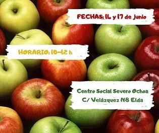 El Ayuntamiento de Elda organiza un taller de nutrición intercultural para mujeres inmigrantes