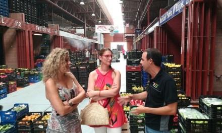 La Agencia Local de Desarrollo de Alicante impulsa la nueva zona de coworking para jóvenes en Mercalicante