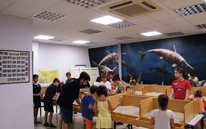 Unes 4.300 persones visiten el MUPE per a gaudir de la paleontologia a l'estiu