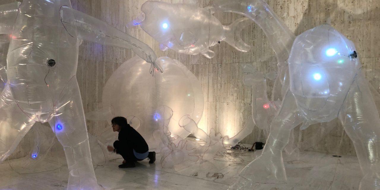El Museo de Arte Contemporáneo de Alicante exhibe un aperitivo de la gran exposición que mostrará la artista alicantina Olga Diego en la Lonja del Pescado de Alicante