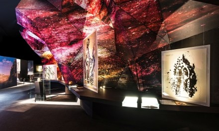 'Rupestre. Els primers santuaris' del MARQ gana el prestigiós German Design Award pel seu disseny expositiu