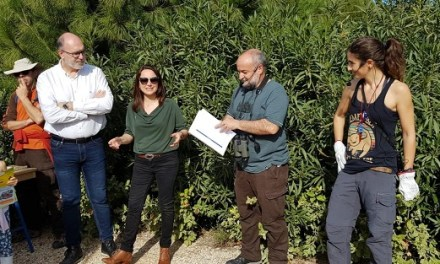 El parque La Marjal de Alicante, hábitat para un centenar de especies de aves