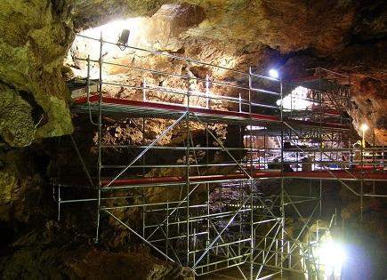 Un estudio revela la dieta del primate fósil 'Theropithecus oswaldi' descubierto en el yacimiento de Cueva Victoria