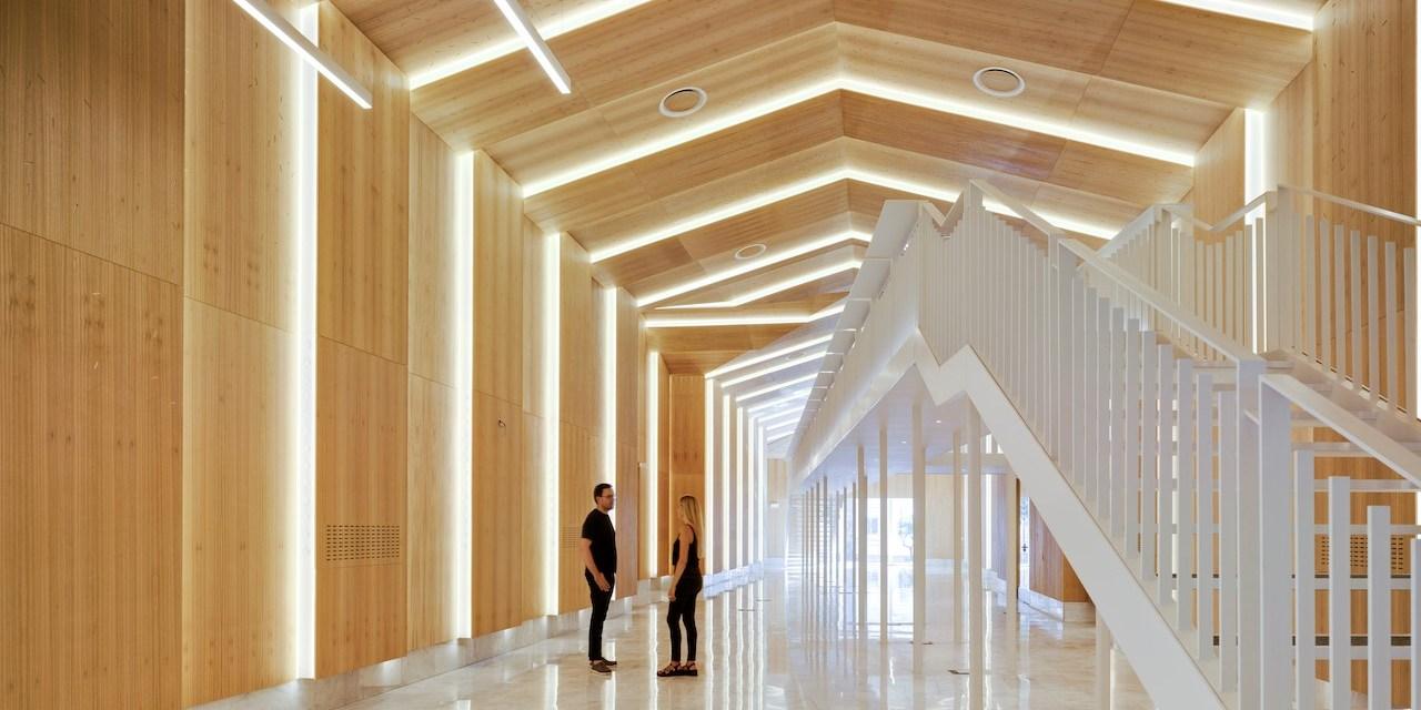 El Museu de Col·leccions Naturals de la Universitat d'Alacant guanya el 2020 CID Award de Coverings