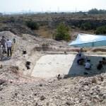 La revista de la asociación europea 'Progeo news' publica los estudios del Museo Paleontológico de Elche