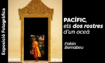 La Universitat d'Alacant llança la seua primera exposició virtual, «Pacífic, els dos rostres d'un oceà» de Pablo Bernabeu