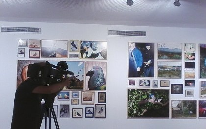 """L'exposició """"Estudi elemental del Llevant""""de Ricardo Cases supera les 1.500 visites en Las Cigarreras"""