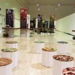 La exposición «Especias: El universo del Sabor» llega a la Sede de la Universidad de Alicante
