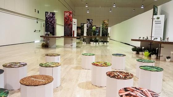 L'exposició «Espècies: l'univers del sabor» arriba a la Seu de la Universitat d'Alacant