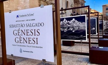 """La Plaza del Congreso Eucarístico de Elche acoge la exposición """"Génesis"""" de Sebastiao Salgado para mostrar la auténtica naturaleza a pie de calle"""