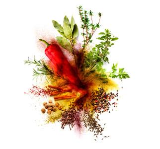 Exposición sobre Especias: el universo del sabor