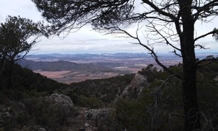 'Villena Viva' acerca los parajes naturales de Villena de una forma divertida