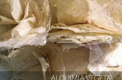 """La Seu Ciutat d'Alacant inaugura l'exposició """"Alquímia vegetal"""" de Pilar Sala"""