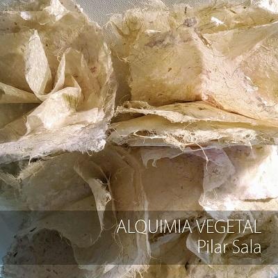 La Sede Ciudad de Alicante inaugura la exposición «Alquimia vegetal» de Pilar Sala