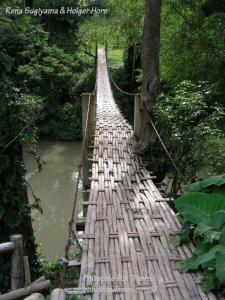 Philippine fun divers alona beach panglao bohol adventure trip loboc river hanging bridge 768x1024