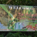 Philippine tarsier and wildlife sanctuary corella, bohol, philippines! 004