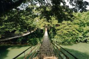 Crossing the breathtaking tigbao hanging bridge bohol philippines 0001