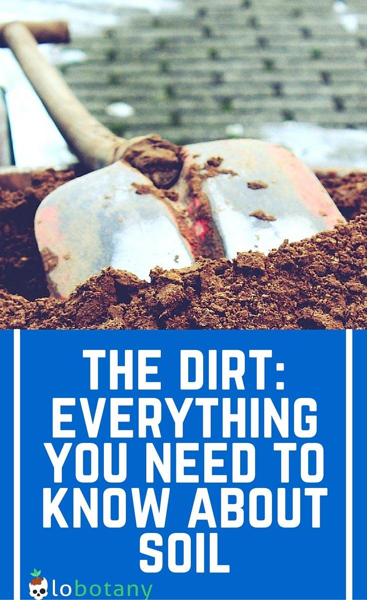Small Space Vegetable Gardening: Choosing The Best Potting Soil For Your Garden