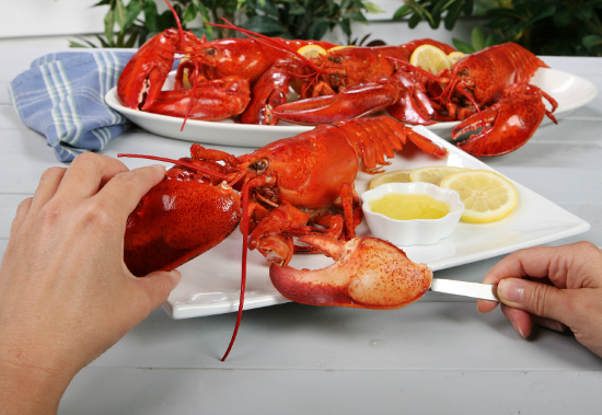 How to eat a whole Maine Lobster