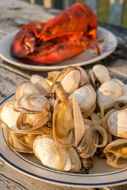 Lobster Clam Bake with Steamer clams