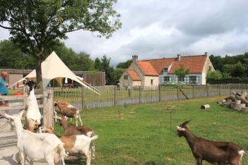 granja belgica 2