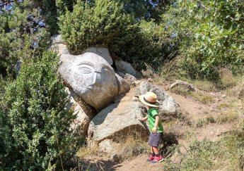 roca viva 5