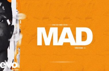 Vector – Mad