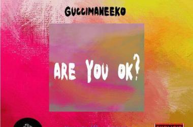 Guccimaneeko – Are You Ok?