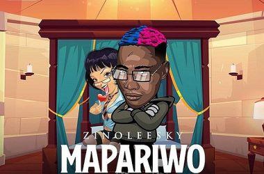 Zinoleesky – Mapariwo