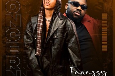 Fawazzy ft. Magnito – Concern You