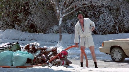 Image result for cousin eddie