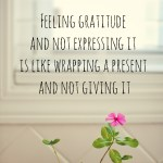 Expressing Gratitude | Week 2 On My Gratitude Journey