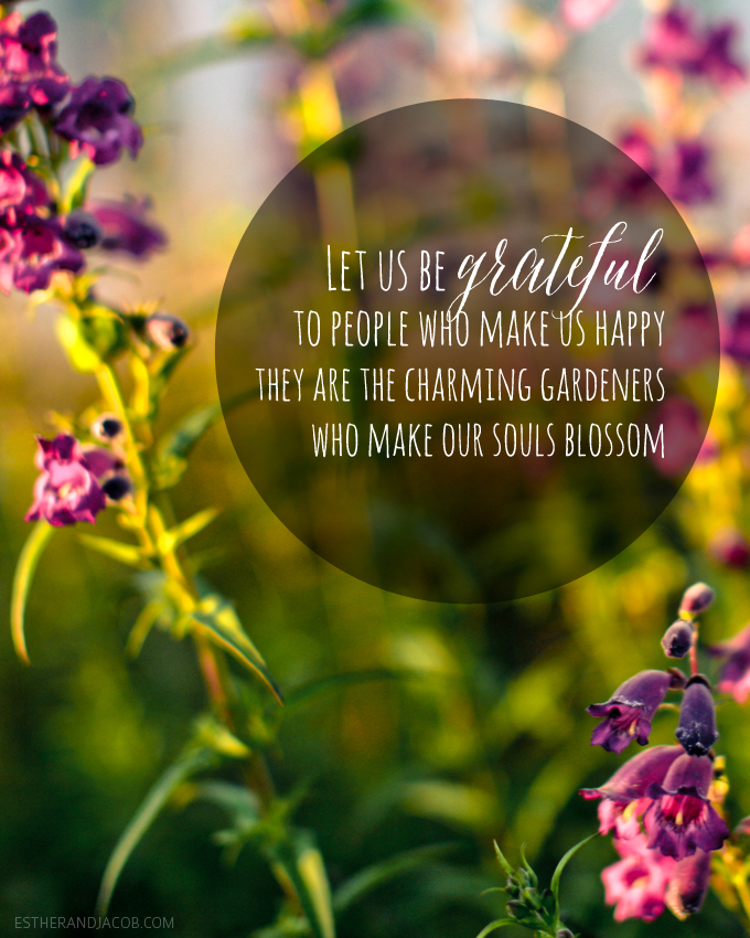 gratitude quotes. gratitude quote of the week. quotes on gratitude. on gratitude. practicing gratitude. having an attitude of gratitude. Foster an attitude of gratitude.