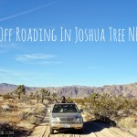 Off Roading in Joshua Tree National Park