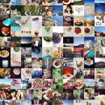 365 Photo a Day Challenge on Instagram – Complete! 3 Tips to Make it Through the Year