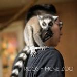 Roos n More Zoo in Las Vegas Part II