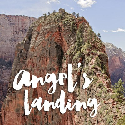 Hiking Angels Landing Zion National Park.
