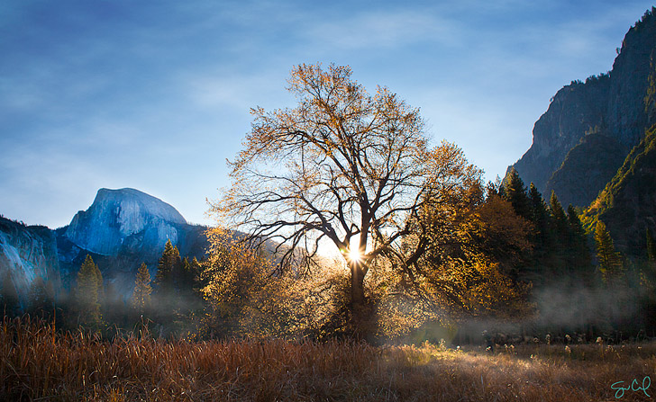 Cooks Meadow (15 Top Things to Do in Yosemite National Park).
