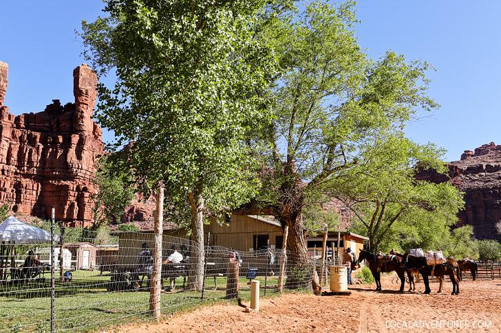 Village of Supai, Arizona - Havasupai Indian Reservation // localadventurer.com