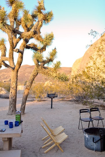Belle Campground Joshua Tree National Park has the most spacious sites and nicest campgrounds // localadventurer.com